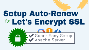 setup lets encrypt auto renew