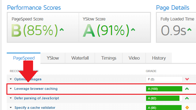 check for leverage browser caching